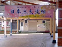 高田駅 観桜会看板