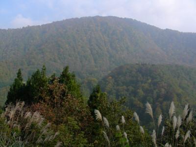 秋山郷の山々